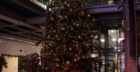 Weihnachtsbaum-beleuchtet-min-_1__SxQz01A3-min